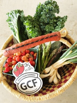 Basket with onions, kale, strawberries, and a GCF refrigerator magnet