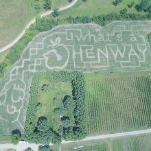 What's Henway? is the featured question in the Great. Country Farms 2020 Corn Maze design which is all about apples and hard cider